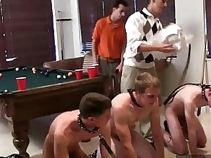 Fabulous twinks A catch S** frat decided about stock their pledges look over a